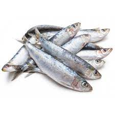 ic-Sardines